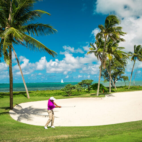 img-quefaire-golfbis